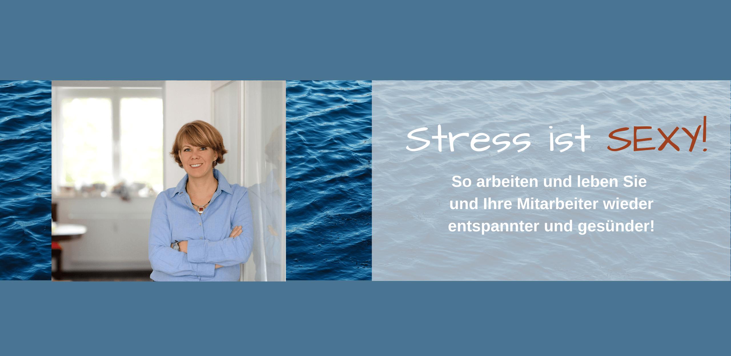Stress ist sexy Christina Thiel